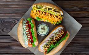 Picture sausage, carrot, sauce, ketchup, salad, buns, hot dog