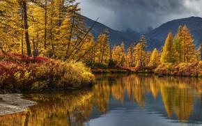Picture autumn, trees, landscape, mountains, clouds, nature, reflection, river, Bank, Blizzard, Kolyma, Maxim Evdokimov