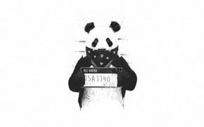 Picture Minimalism, Panda, Style, Background, Art, Art, Style, Background, Animal, Minimalism, Animal, Bandana, Bandana, Panda, BW, …