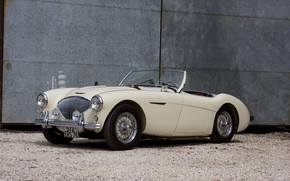 Picture Roadster, The Mans, Austin-Healey 100M