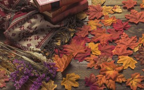 Picture autumn, leaves, flowers, background, tree, colorful, book, wood, background, autumn, leaves, autumn, maple