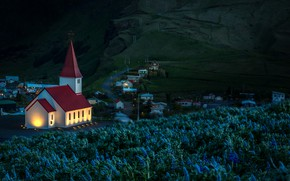 Picture flowers, mountains, night, village, Church, Iceland, lupins, Vic