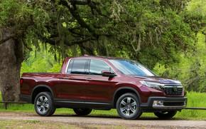 Picture vegetation, Honda, pickup, Ridgeline, 2019