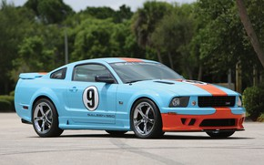 Picture Mustang, Ford, Saleen, Coupe, 2007, Extreme, S281