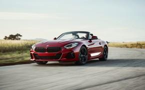 Picture asphalt, red, speed, BMW, Roadster, BMW Z4, First Edition, M40i, Z4, 2019, G29