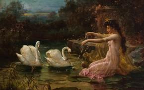 Picture girl, oil, swans, Hans Zatzka, «At the Swan Lake»