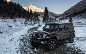 Picture snow, trees, mountains, 2018, Jeep, dark gray, Wrangler Sahara
