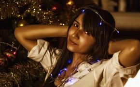 Picture lights, girl, beautiful, look, pose, Christmas tree, Kide Fotoart