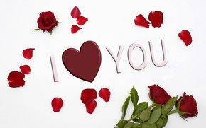 Picture love, roses, petals, Valentine's Day