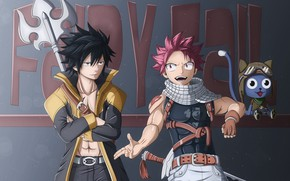 Picture cat, Fairy Tail, Natsu, Fairy tail, Grey