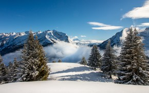 Picture winter, the sky, snow, trees, landscape, mountains, nature, fog, ate