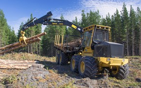 Picture forest, the sky, trees, yellow, wood, wheel, hemp, loading, Tigercat, big wheels, mites, forestry equipment, …