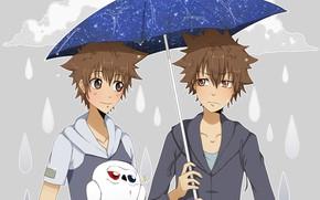 Picture rain, umbrella, bird, Katekyo Hitman reborn, Teacher mafia Reborn, Sawada Tsuyoshi