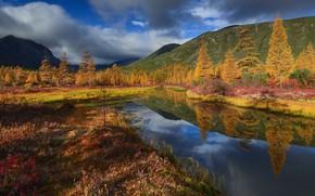 Picture autumn, clouds, landscape, nature, stream, hills, Kolyma, Maxim Evdokimov, Unknown
