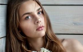 Picture portrait, sponge, the beauty, Liana Bragin, Yuri Leo