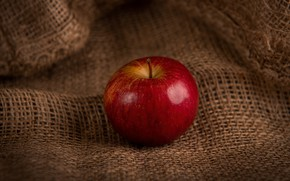 Picture red, Apple, food, fruit, still life, burlap, composition, one