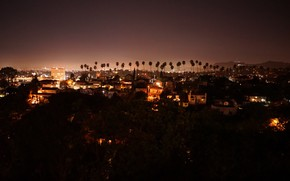 Picture stars, the city, palm trees, home, lights, beautiful, night city, vanity, lights night, look over, …