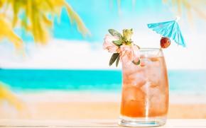 Picture ice, sea, summer, stay, drink, lemonade, fresh