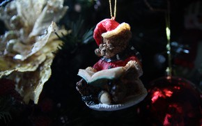 Picture the dark background, holiday, toy, bear, Christmas, New year, book, needles, cap, Christmas decorations, bear, …