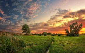Picture sunset, landscape, nature