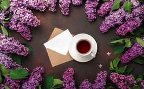 Picture flowers, flowers, lilac, romantic, coffee cup, spring, purple, lilac, a Cup of coffee