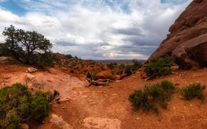 Picture stones, rocks, desert, USA
