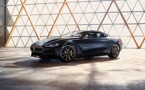 Picture light, coupe, BMW, the room, 2017, 8-Series Concept