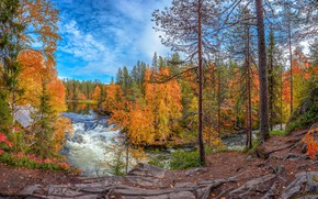 Picture autumn, forest, river, rocks
