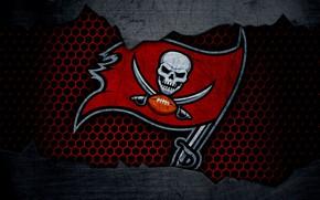 Picture wallpaper, sport, logo, NFL, american football, Tampa Bay Buccaneers