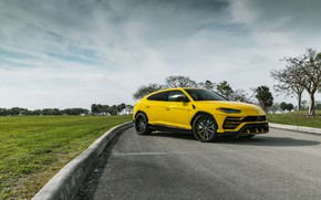 Picture Lamborghini, Yellow, Urus, VAG, Sight