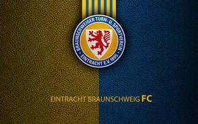 Picture wallpaper, sport, logo, football, Bundesliga, Eintracht Braunschweig