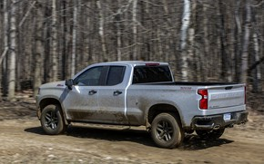 Picture forest, movement, earth, Chevrolet, pickup, Custom, Silverado, 2020