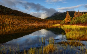 Picture autumn, grass, clouds, landscape, mountains, nature, lake, reflection, morning, forest, Kolyma, Maxim Evdokimov