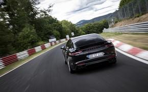 Picture black, Porsche, Panamera, back, The Nürburgring, 2020, Nordschleife, предсерийный