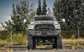 Picture Dodge, Ram, Custom, Vehicle