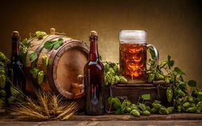 Picture foam, leaves, Board, beer, mug, bottle, ears, barrel, hops