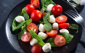 Picture tomatoes, salad, Basil, mozzarella