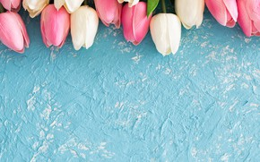 Picture flowers, background, blue, texture, tulips