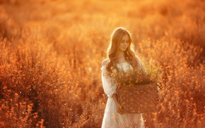 Picture field, girl, the sun, flowers, basket, hair, Nick Kolesnikov