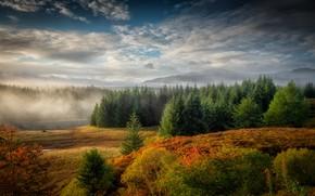 Picture autumn, fog, river, Autumn, Scotland, Western Highlands