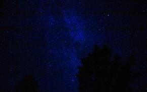 Picture Night, Stars, Starry sky