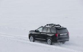 Picture snow, GMC, SUV, Denali, Yukon, 2020