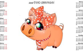 Picture pig, calendar, pig, 2019