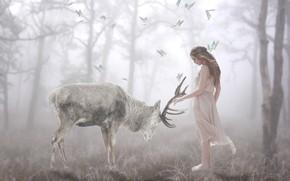 Picture forest, girl, butterfly, nature, pose, fog, treatment, deer, morning, fairy, art, friendship, beauty, horns, light …