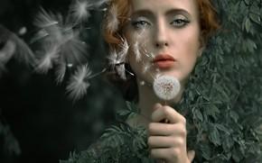 Picture girl, nature, dandelion