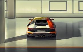 Picture Lamborghini, sports car, rear view, exhaust, Aventador S, Skyler Grey