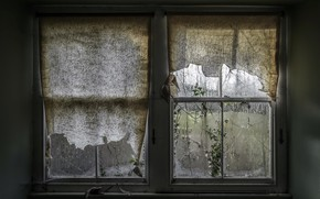 Picture house, window, curtains, naturalism
