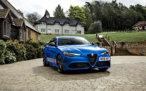 Picture Alfa Romeo, Giulia Fast