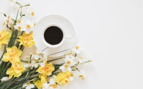 Picture flowers, coffee, drink, daffodils
