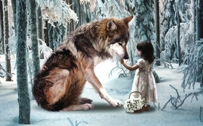 Picture winter, forest, wolf, girl